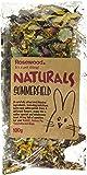 ROSEWOOD Boredom Breaker Natural Treat Summerfield, 100g