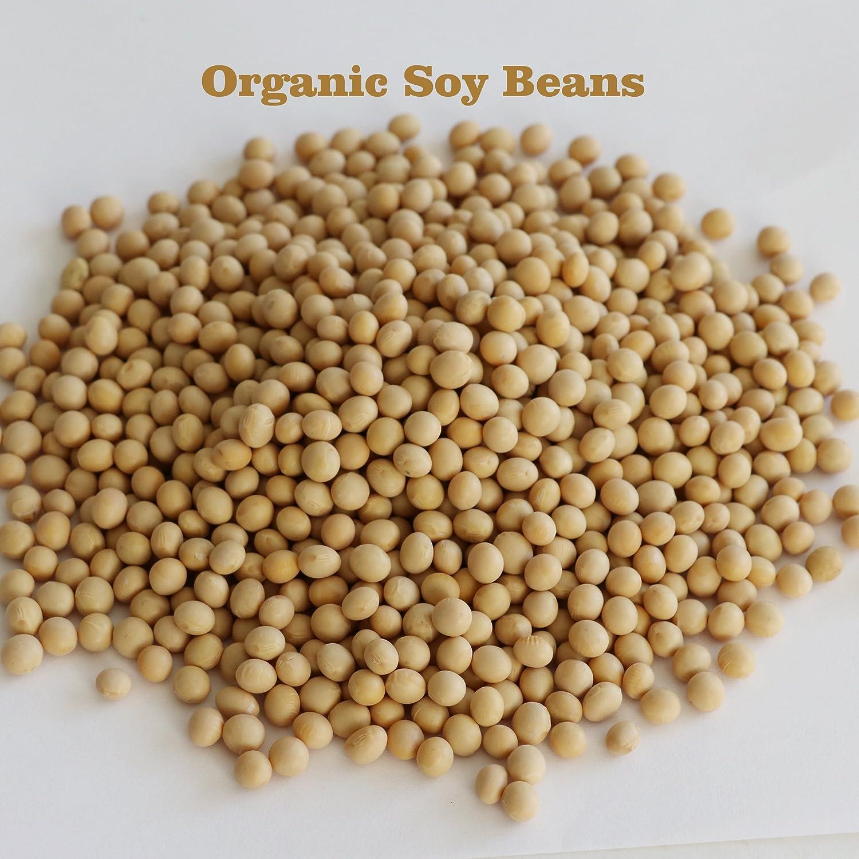 17 lb Premium Identity Preserved Non-GMO Soybeans. Newest Crop