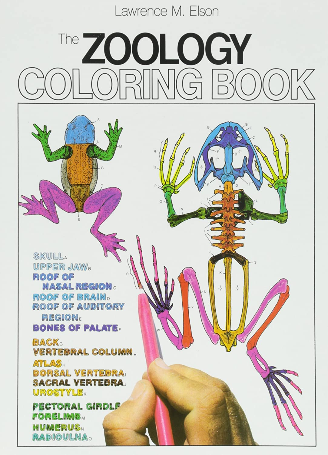 The zoology coloring book - Harper Collins 218 Pages Paperback Zoology Coloring Book Science Lab Education Curriculum Support Amazon Com Industrial Scientific