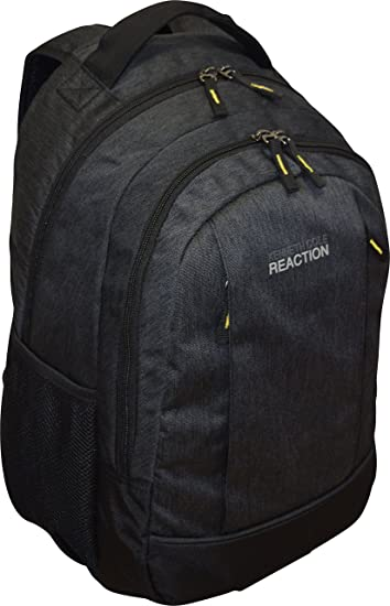 Amazon.com: Kenneth Cole R-Tech Double Compartment Backpack With ...