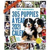 365 Puppies-A-Year Picture-A-Day Wall Calendar 2021