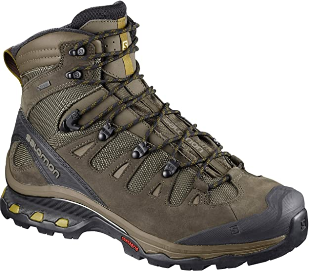 Salomon Men's Quest 4D 3 GTX Backpacking Boots, Wren/Bungee Cord/Green Sulphur, 9.5 D US