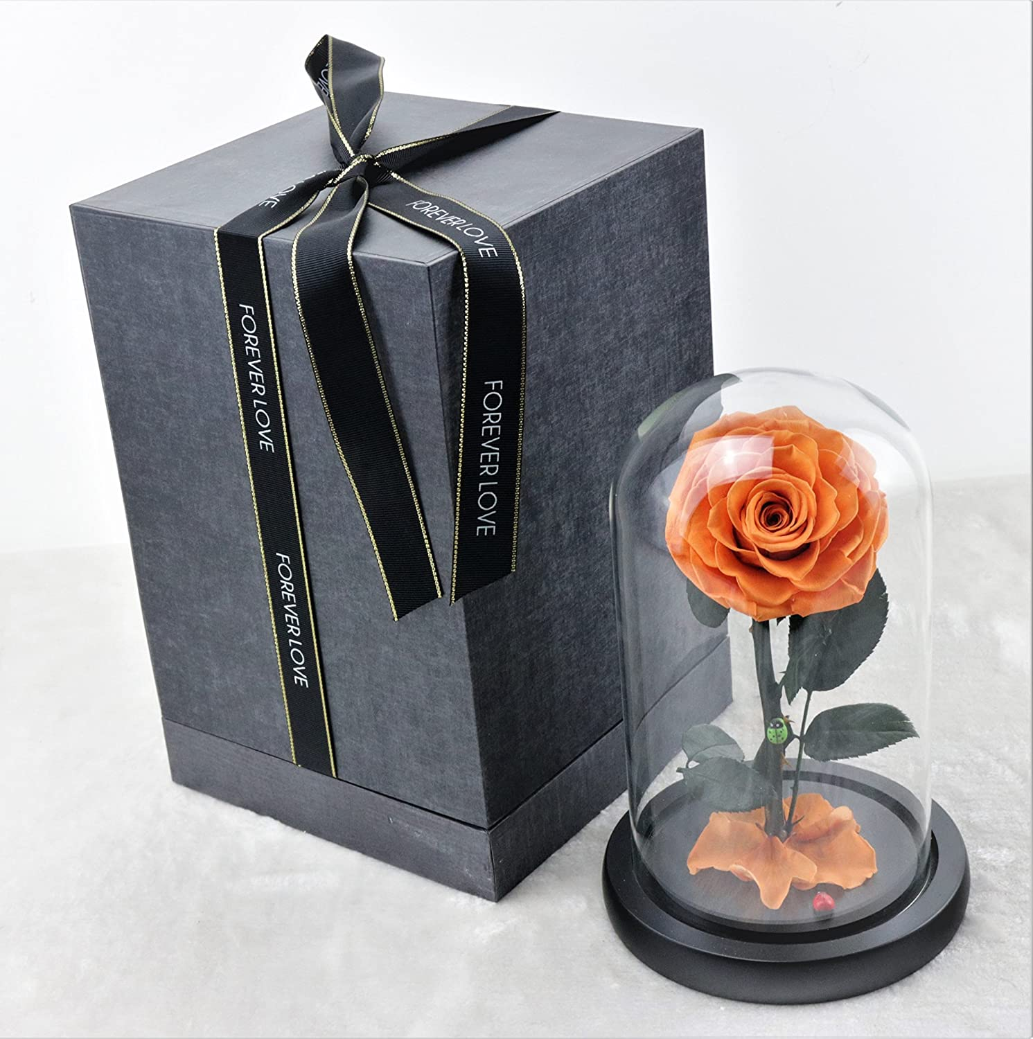 Gift for Valentines Day Anniversary Birthday Mothers Day Small, Red Small art + Preserved Rose Never Withered Roses Flower in Glass Dome Gift for Valentine/'s Day Anniversary Birthday Mother/'s Day