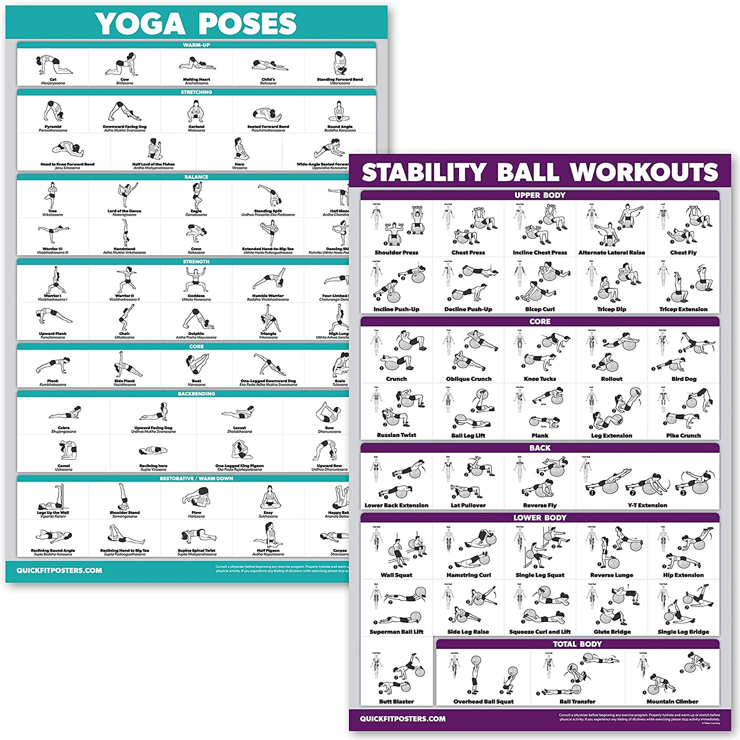 QuickFit Yoga Poses and Exercise Ball Workout Posters - Laminated 2 Chart Set - Yoga Positions and Stability Ball Routine - 18