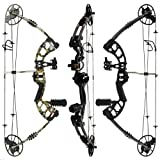 """RAPTOR Compound Bow Kit: LIMBS MADE IN USA 