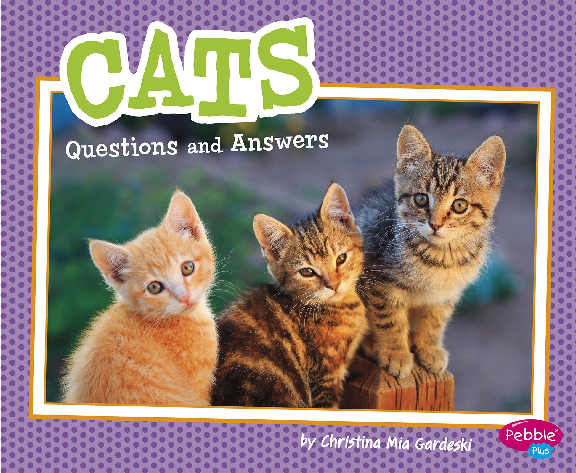 Cats Questions and Answers (Pet Questions and Answers