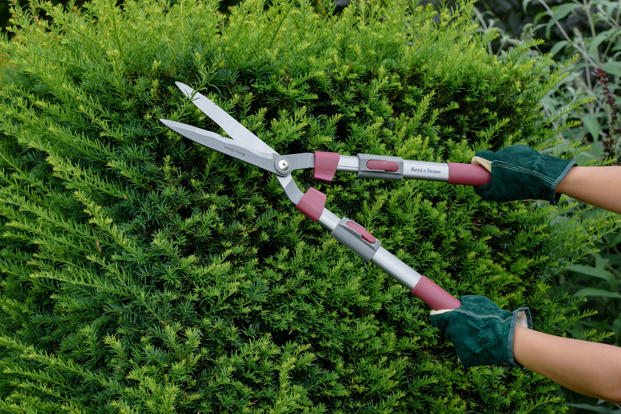 Kent and Stowe Telescopic Hedge Shear 70100421 by Kent & Stowe (Image #3)