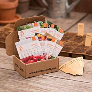Seed Starter Kit – Kitchen Garden | Non-GMO | Heirloom Seed Packets | Natural Wood Row Markers | Sustainable Healthy Living | Fresh Veggies