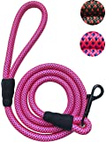 PetsCare Sturdy Nylon Dog Leash for Small Medium Large Dogs - Durable and Thick Nylon Rope - 5 or 6 Feet Long - Lowest Price of the Year - Special Offer Ends Soon