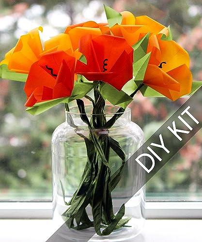 Amazon origami diy kit make your own california poppies origami diy kit make your own california poppies origami flower bouquet origami paper supplies mightylinksfo Choice Image