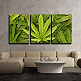 "wall26 3 Piece Canvas Wall Art - Big Marijuana Leaf Close Up with Texture Background of Cannabis Leaves - Modern Home Decor Stretched and Framed Ready to Hang - 16""x24""x3 Panels"