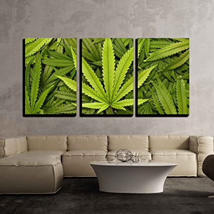 wall26 3 Piece Canvas Wall Art - Big Marijuana Leaf Close Up with Texture Background of : wall art leaves - www.pureclipart.com