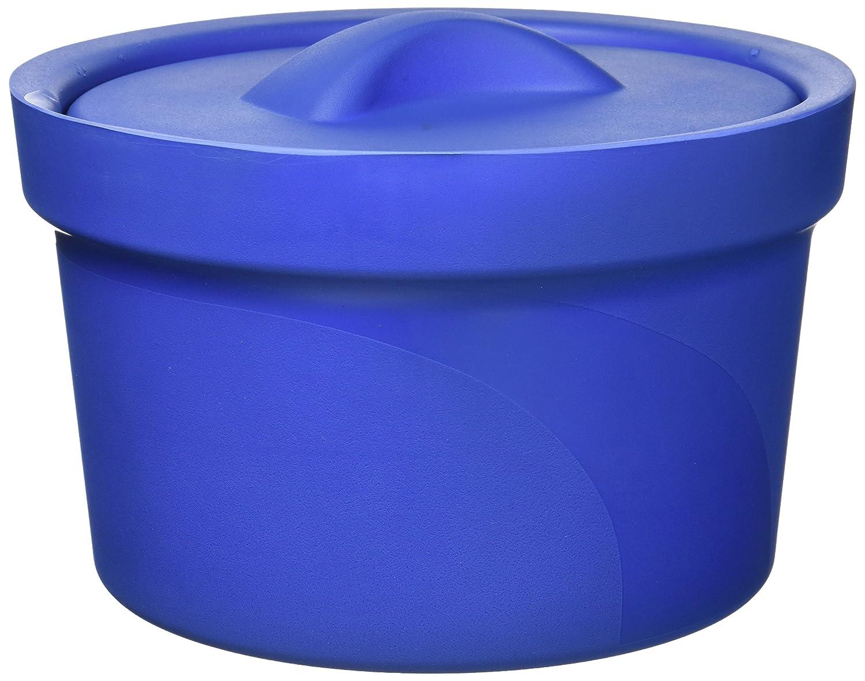 neolab 2 - 6001 - Cubitera con tapa, espuma de poliuretano, aprox. 2,5 l, color azul: Amazon.es: Industria, empresas y ciencia