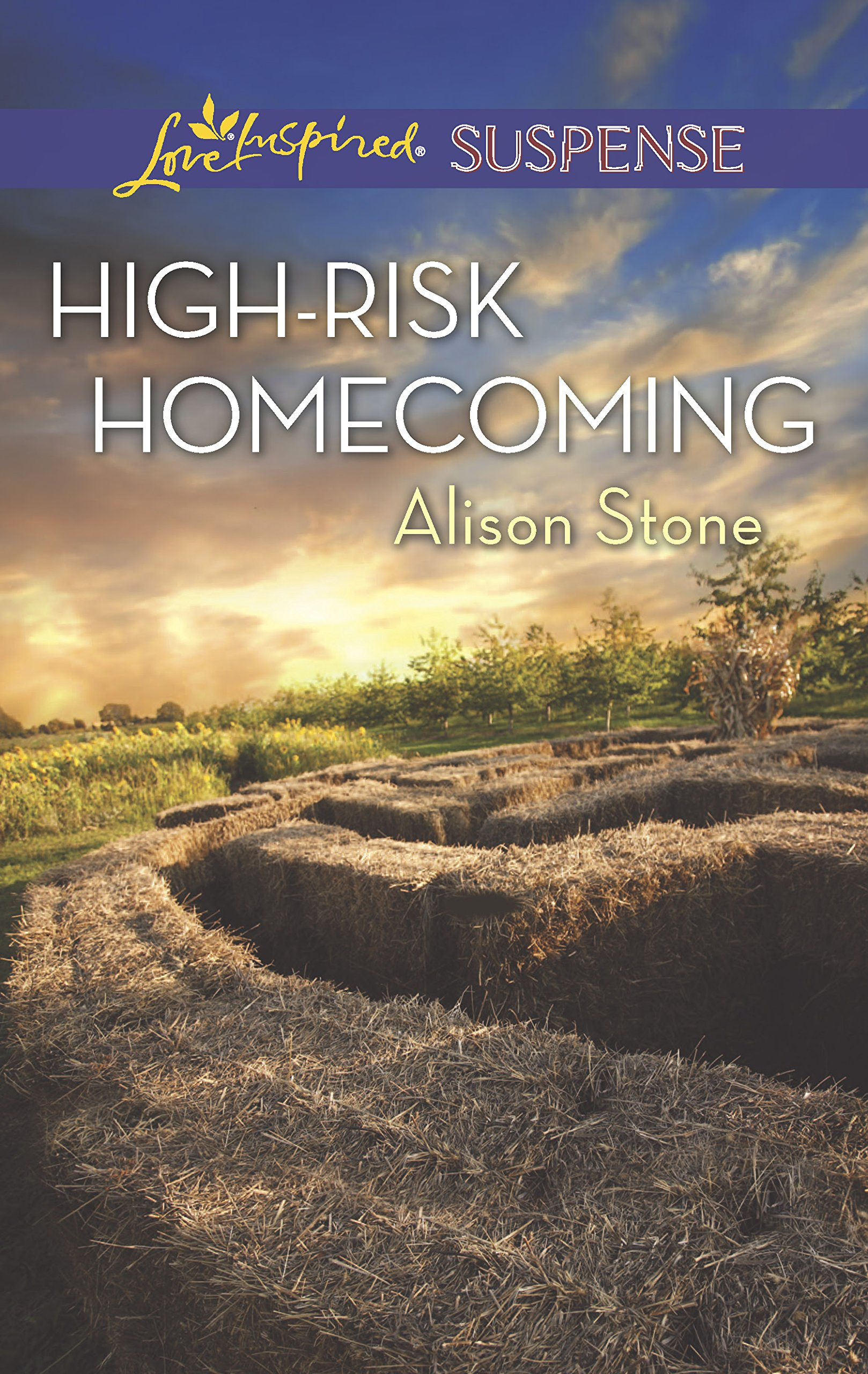 Download High-Risk Homecoming (Love Inspired Suspense) PDF