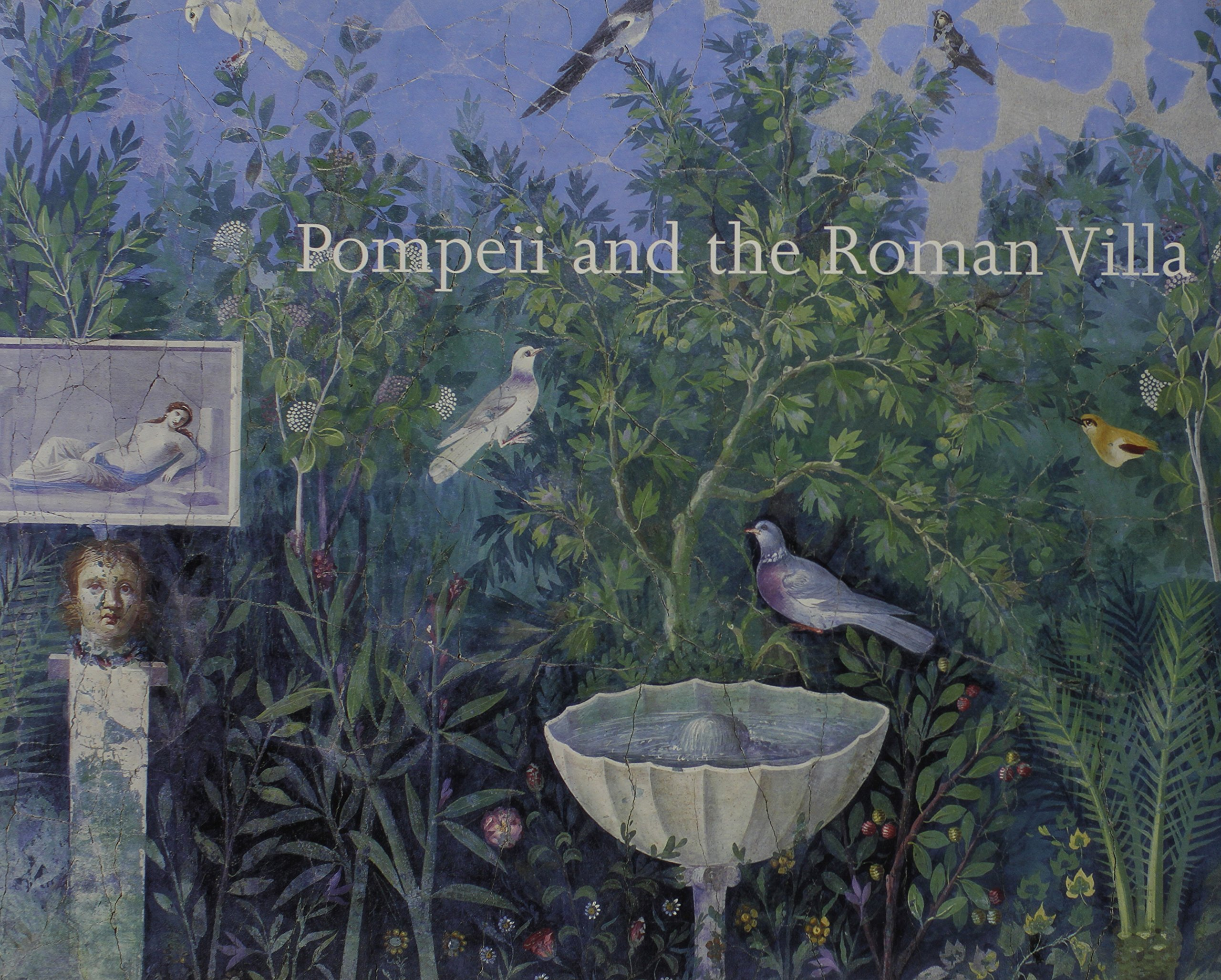 Pompeii and the Roman Villa : Art and Culture Around the Bay of Naples pdf