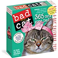 Image for Bad Cat Page-A-Day Calendar 2021