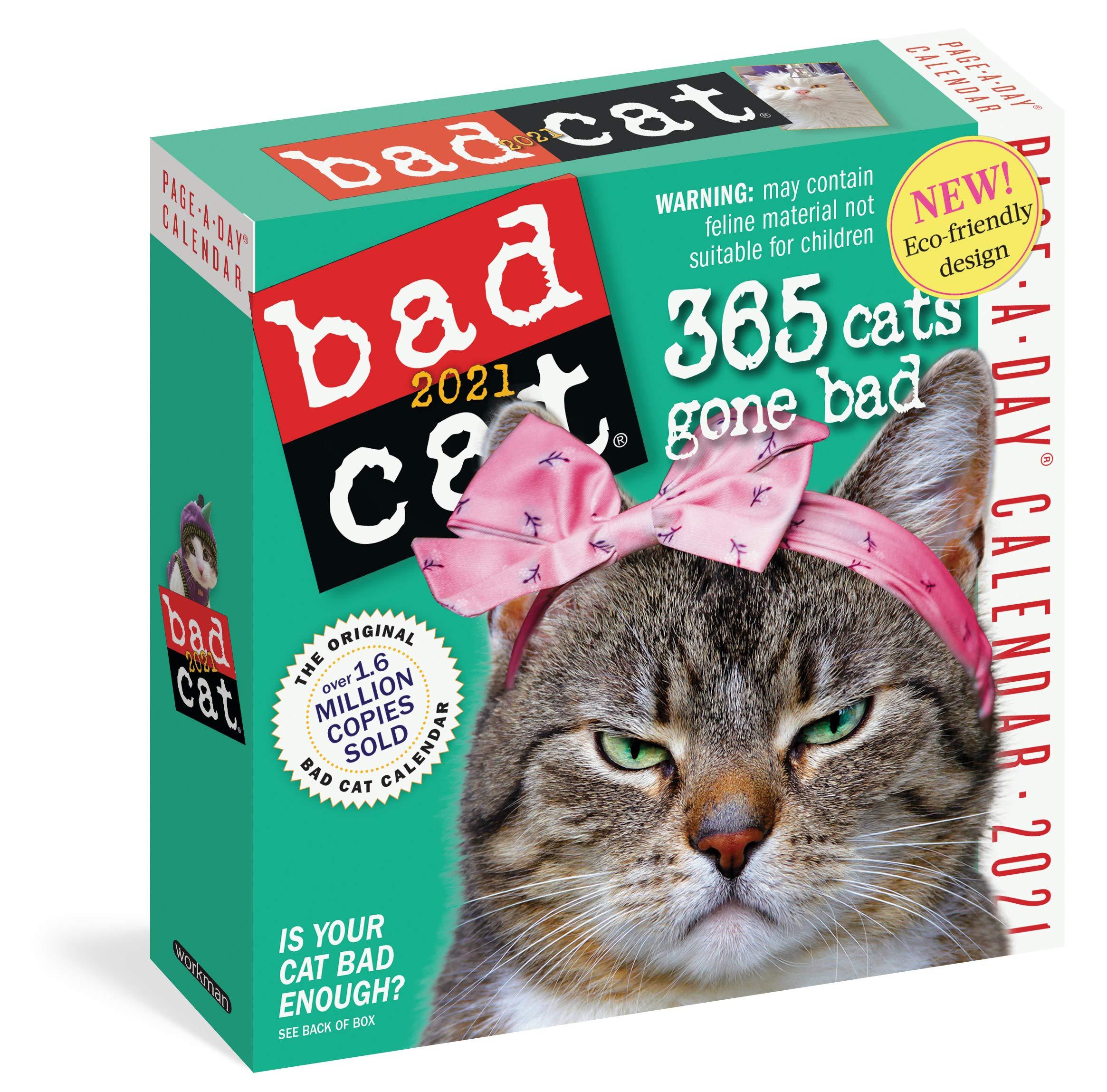 Bad Cat Page A Day Calendar 2021: Workman Calendars: 9781523508334