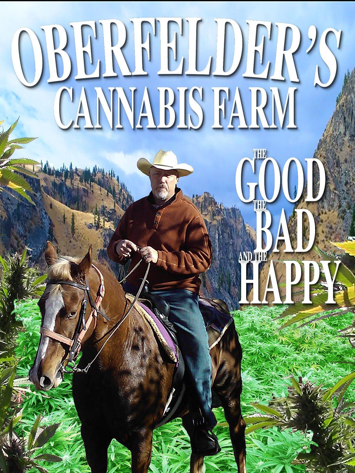 Oberfelders Cannabis Farm, The Good, The Bad, and The Happy