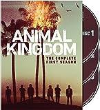 Animal Kingdom: The Complete First Season