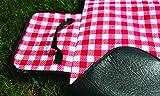 Camco 42801 Picnic Blanket