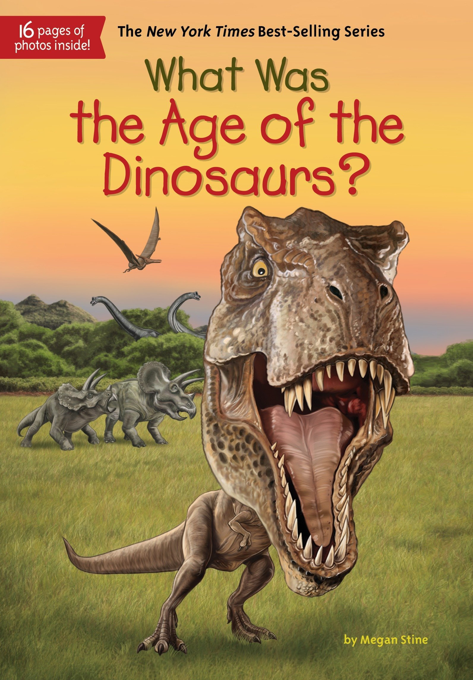 Download What Was the Age of the Dinosaurs? ebook