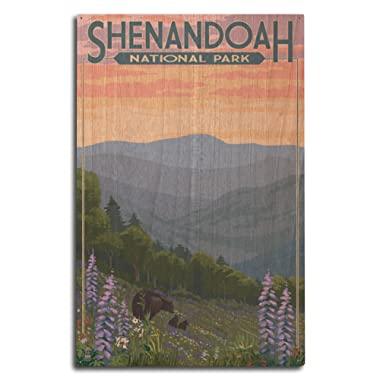 Lantern Press Shenandoah National Park, Virginia - Black Bear and Cubs with Flowers (10x15 Wood Wall Sign, Wall Decor Ready to Hang)