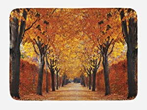 Ambesonne Autumn Bath Mat, Pathway in The Woods Covered with Dried Deciduous Tree Leaves Romantic Fall Season, Plush Bathroom Decor Mat with Non Slip Backing, 29.5