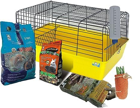 Petuluku - Kit Jaula Grande: Amazon.es: Productos para mascotas
