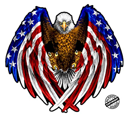 Amazon Com Bald Eagle American Flag Eagle Wings Magnet Decal Is 5 5