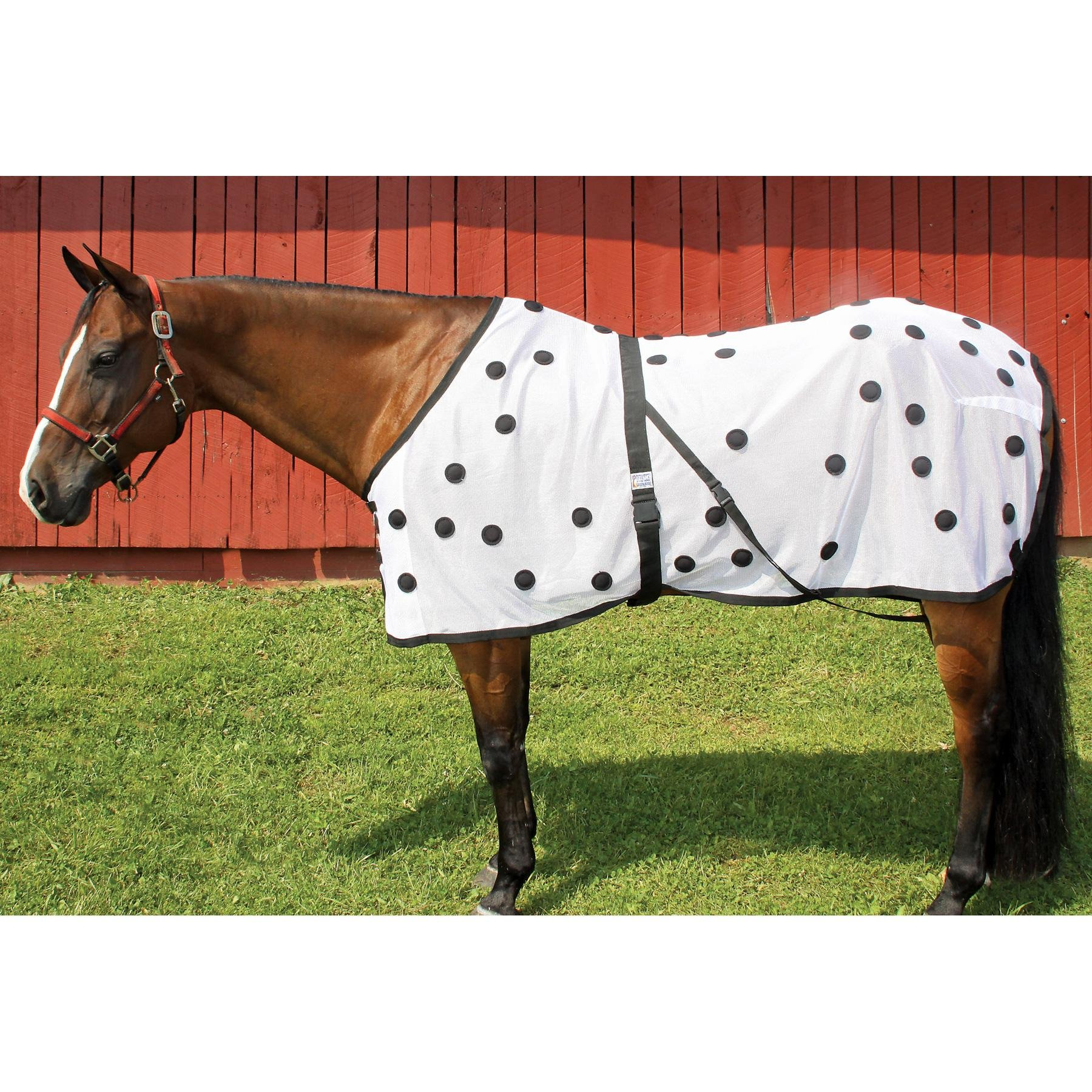 Dura-Tech Therapeutic Magnetic Mesh Sheet for Horses, Magnetic Therapy Blanket for Accelerated Healing, Injury Prevention, and Increased Blood Flow - Available in Even Sizes 76-82 (Size 76)