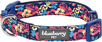 Blueberry Pet 10+ Patterns Made Well Floral Collection