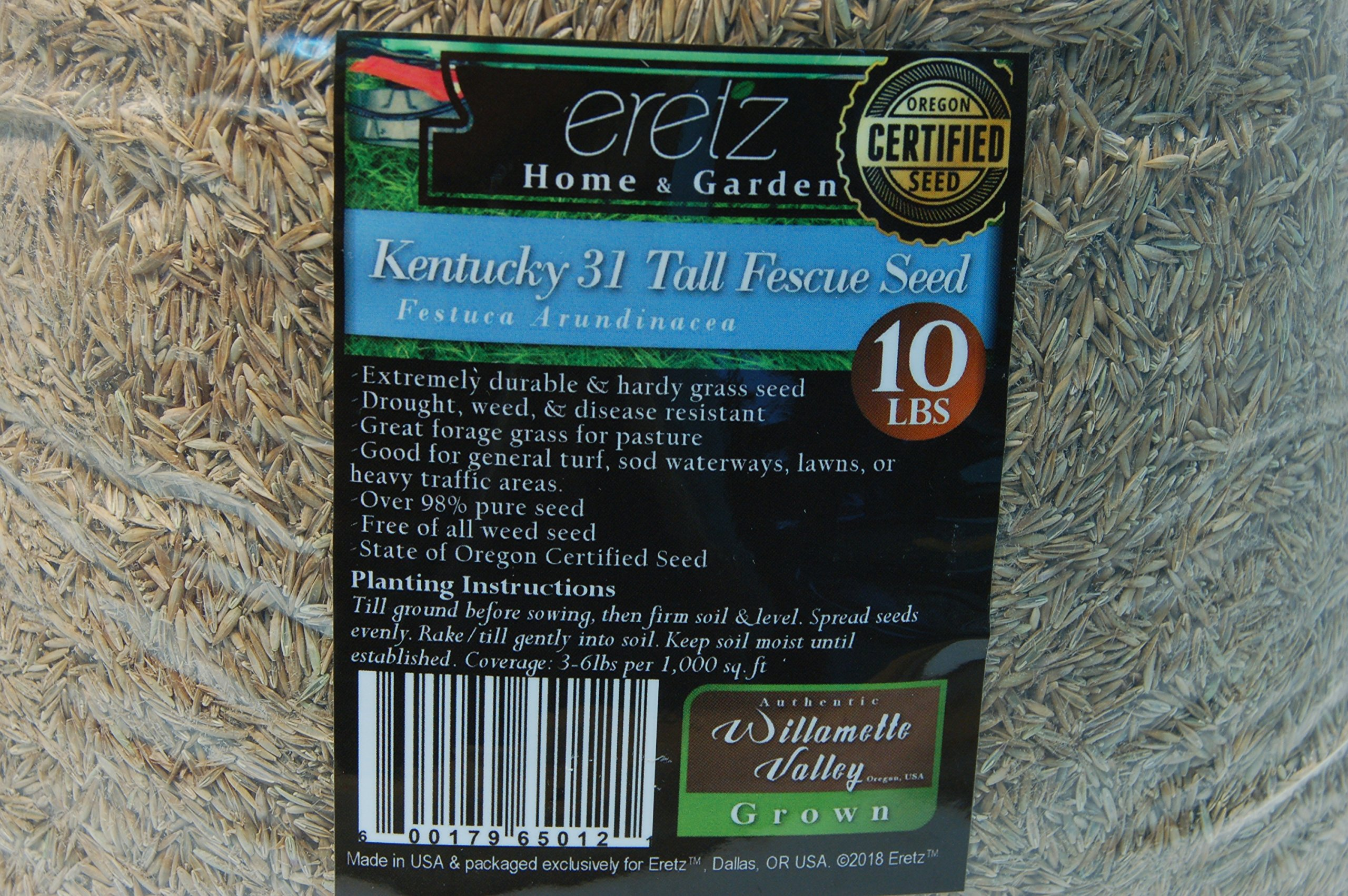 Kentucky 31 Tall Fescue Grass Seed by Eretz - Willamette Valley, Oregon Grown (10lbs)
