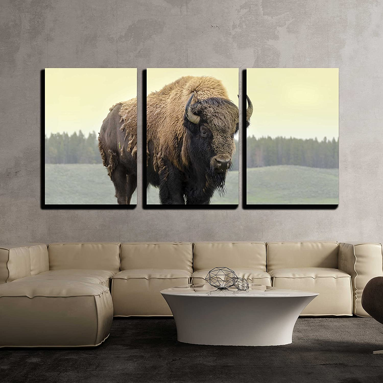 "wall26 - 3 Piece Canvas Wall Art - Bison in Grasslands of Yellowstone National Park in Wyoming - Modern Home Art Stretched and Framed Ready to Hang - 16""x24""x3 Panels"