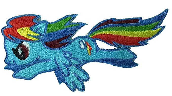 Amazon.com: Squad Girl s My Little Pony Rainbow Flying Dash ...
