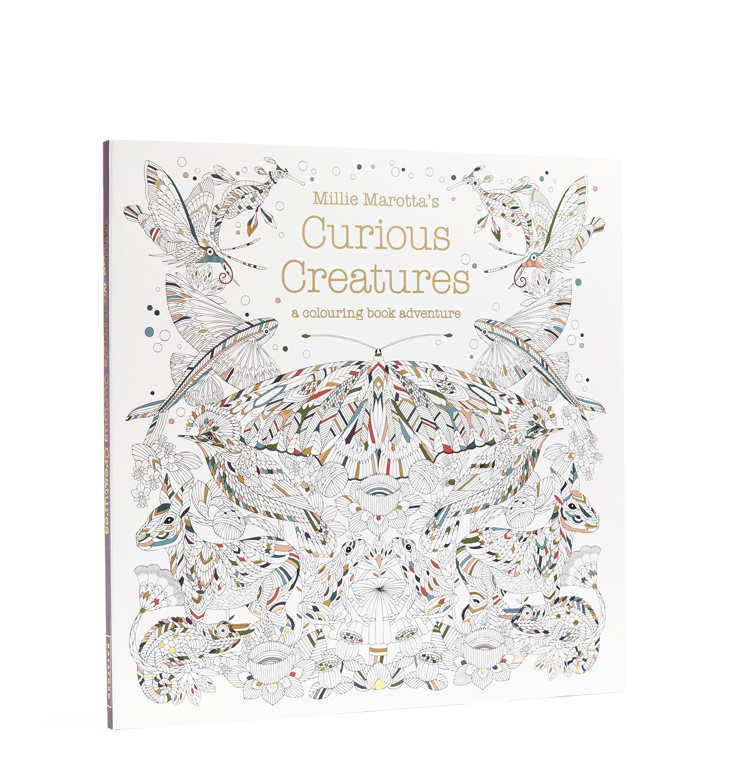 Millie Marottas Curious Creatures NA 9781849943659 Amazon Books