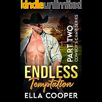 Endless Temptation: An Age Gap Secret Baby Romance (Cowboy's Camp Part Two)