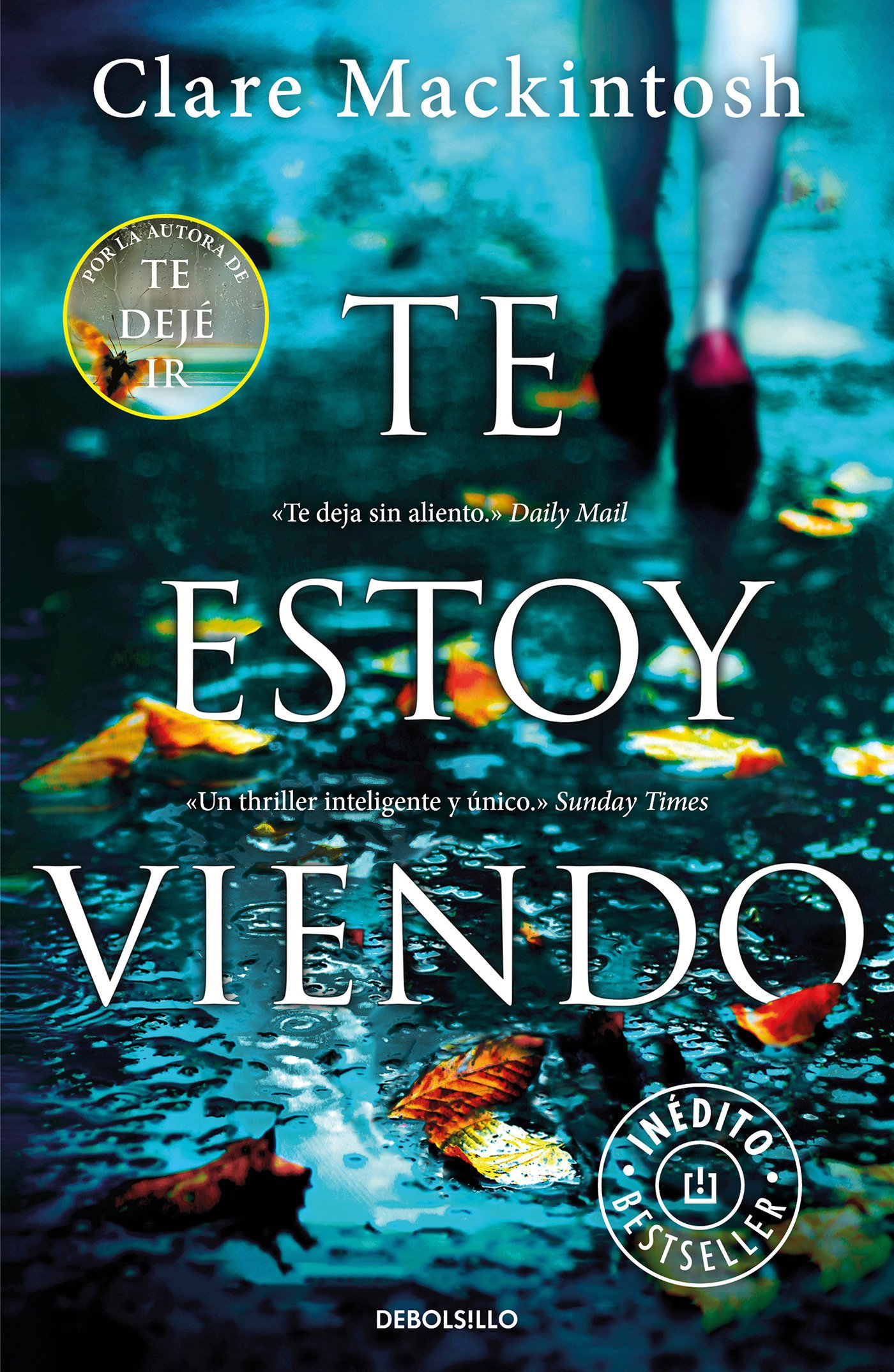 Te Estoy Viendo / I See You: Amazon.co.uk: Clare Mackintosh: 9788466340250:  Books
