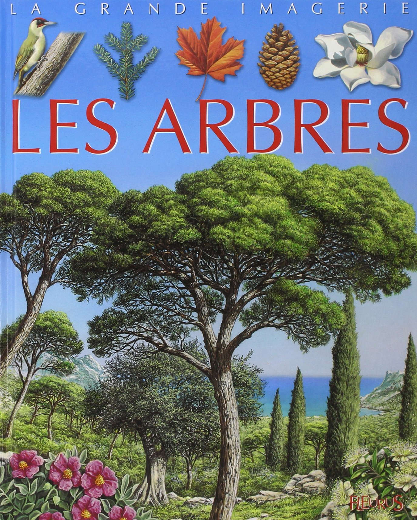 La Grande Imagerie Fleurus: Les Arbres (French Edition) ebook