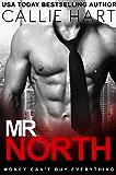 Mr. North (English Edition)