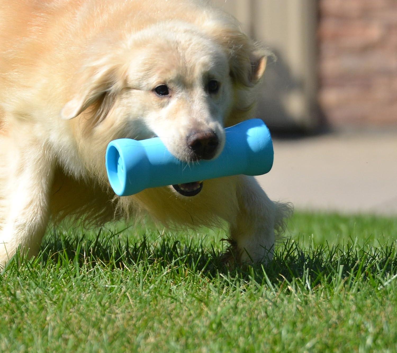 Amazon Crinkits Water Bottle Dog Toy Blue Pet Squeak