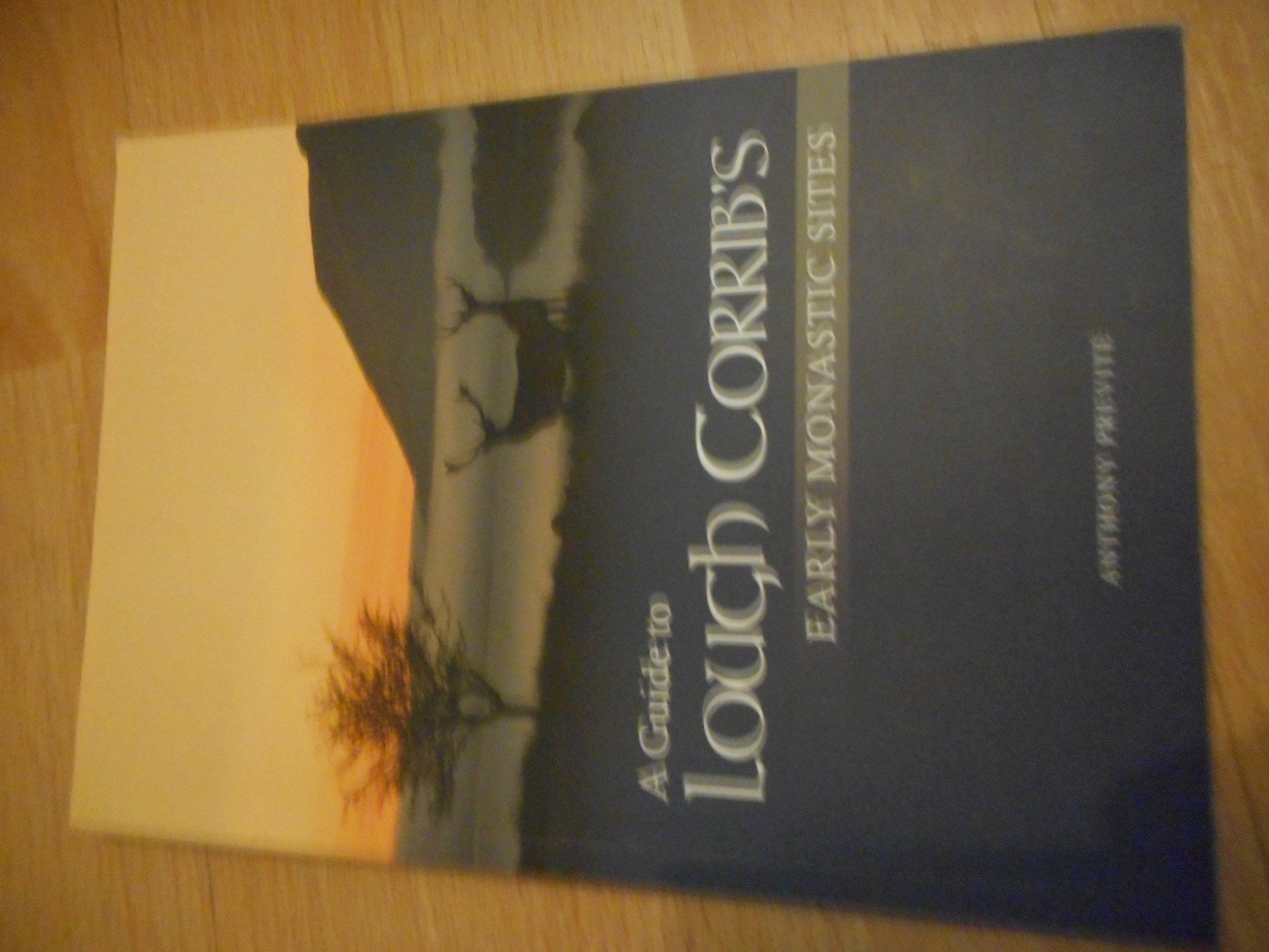 Download A Guide to Lough Corrib's Early Monastic Sites ebook