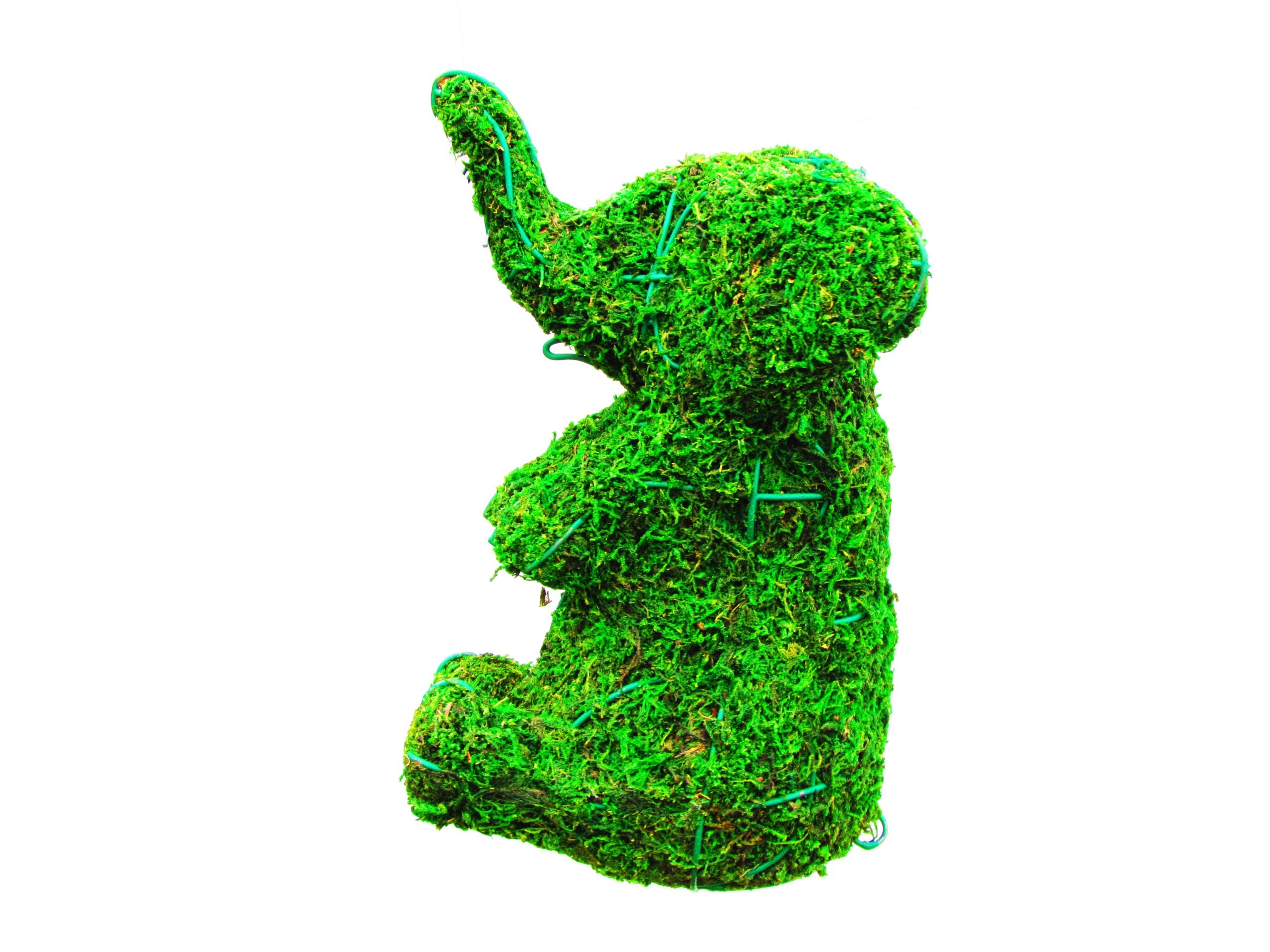 Elephant Sitting 16 inches high x 13 inches long x 9 inches wide w/ Moss Topiary Frame , Handmade Animal Decoration by S.K 703 Topiary Inc.