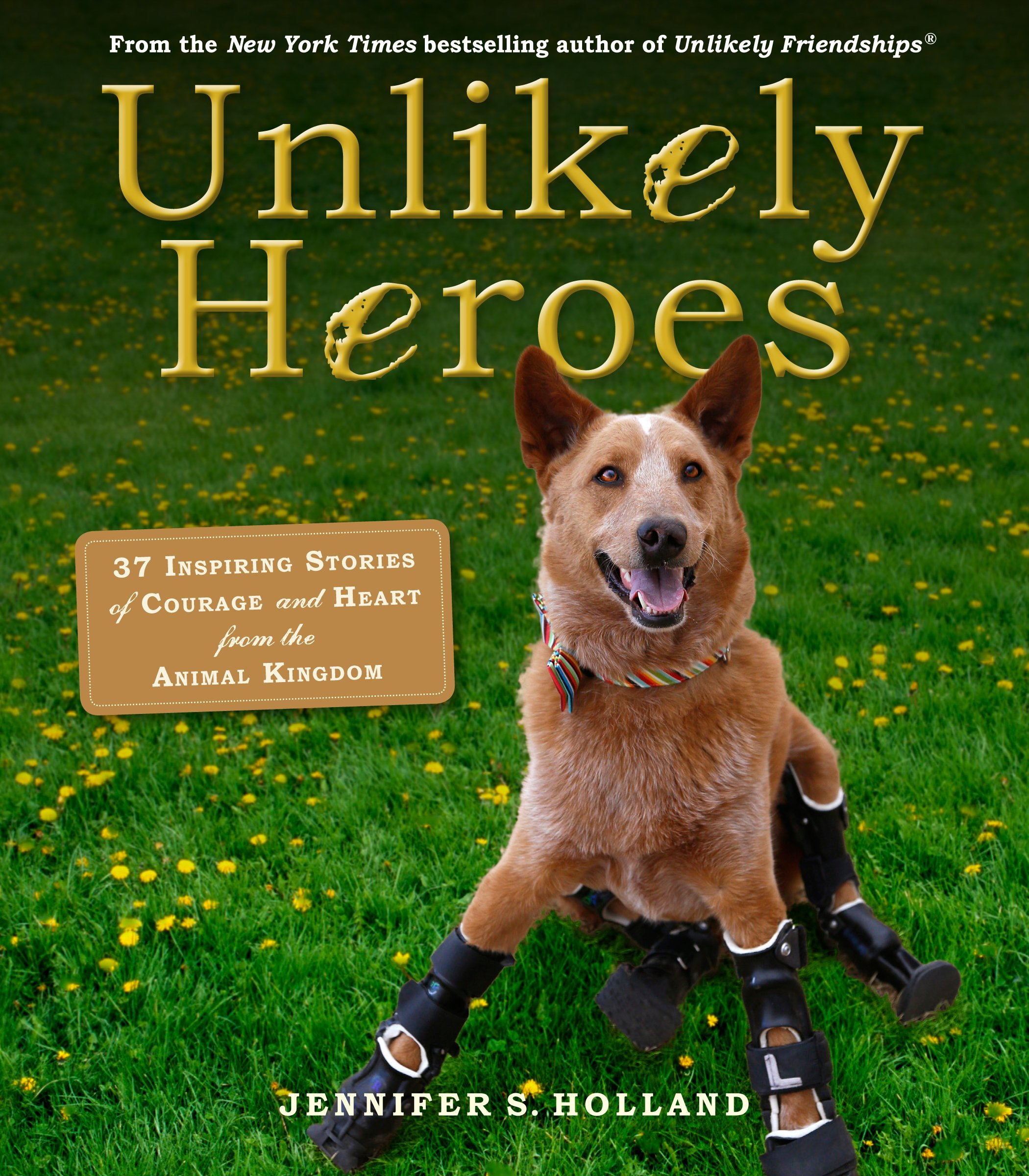Unlikely Heroes: 37 Inspiring Stories of Courage and Heart from the Animal  Kingdom (Unlikely Friendships): Jennifer S. Holland: 9780761174417:  Amazon.com: ...