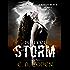 Perfect Storm (Judah Black Novels Book 0)