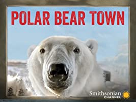 Polar Bear Town - Season 1