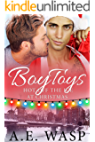 Boy Toys (Hot Off the Ice Book 3)
