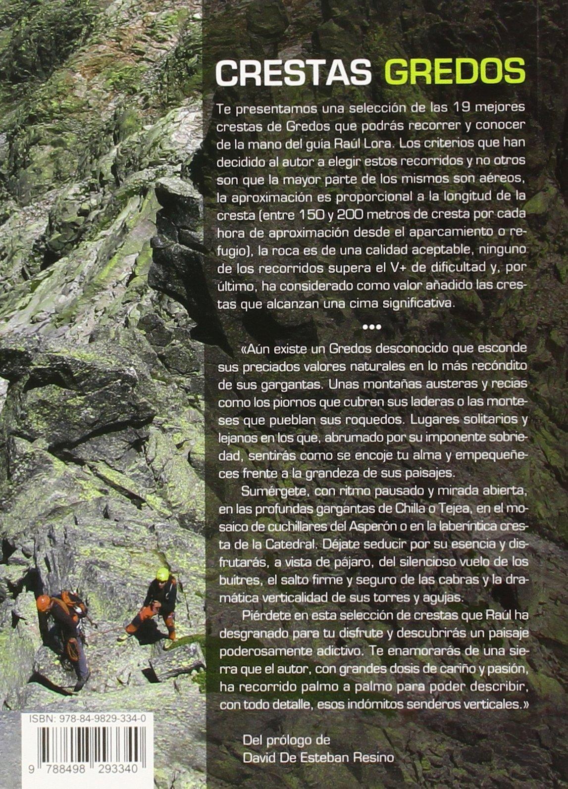 Crestas de Gredos. 19 itinerarios (Guias De Escalada): Amazon ...