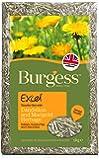Burgess Excel Dandelion and Marigold Feeding Hay 1kg (pack of 3)