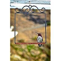 Pop`s SWINGBL Humming Bird Swing 5.25 by 6.5 by 0.25-Inch Black New Free Sh