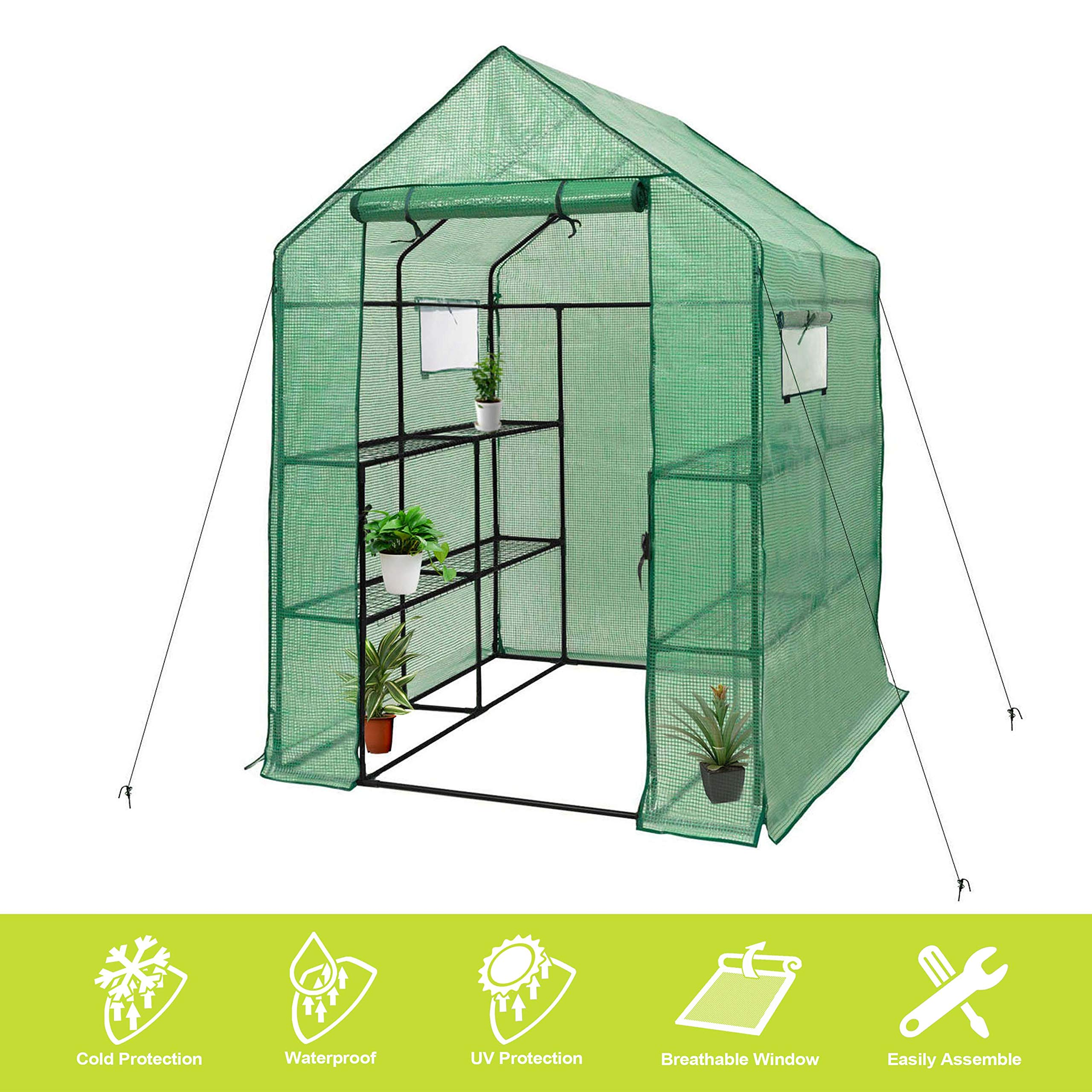 Deluxe Green House 56'' W x 56'' D x 77'' H,Walk in Outdoor Plant Gardening Greenhouse 2 Tiers 8 Shelves - Window and Anchors Include!